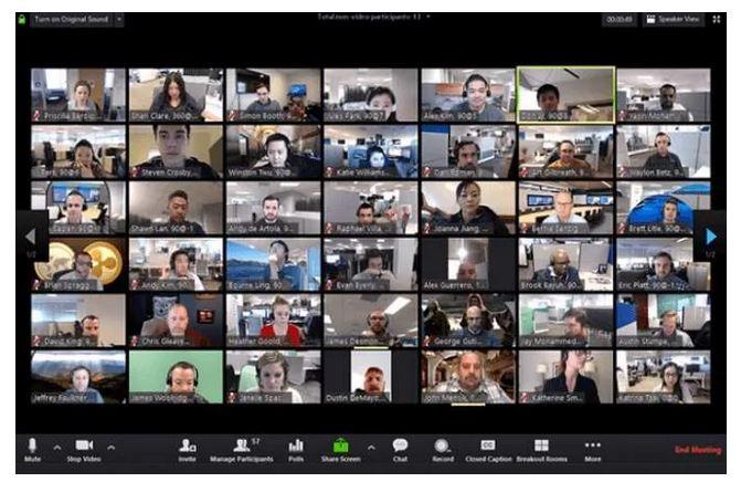 چگونه میتوان افراد دیگر را در جلسه ویدئویی دید؟