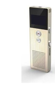 رکوردر Voice Recorder PR1